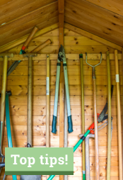 Top tips on clearing out and cleaning up your shed