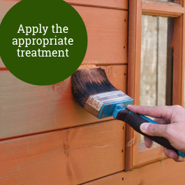Apply a treatment to your shed