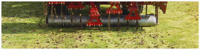 2. Aerate Your Lawn