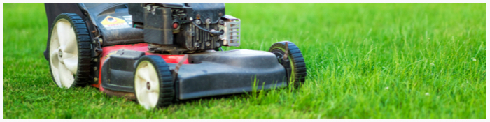 5. Mowing Your Lawn